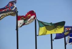 Kanadische Markierungsfahnen lizenzfreies stockbild