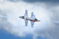 Kanadische Snowbirds-Show Stockbilder