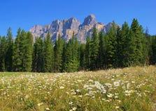 Kanadische Wildnis im Banff-Nationalpark, Kanada Lizenzfreie Stockfotografie
