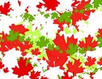 Kanadischer Ahornblatt-Weihnachtshintergrund Stockbild