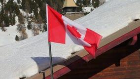 Kanadisches fahnenschwenkendes stock video footage