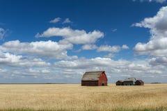 Kanadisches Grasland Stockfotografie