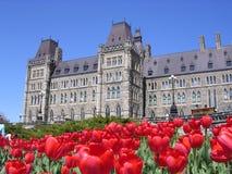 Kanadisches Parlament mit roten Tulpen herum Stockfotografie