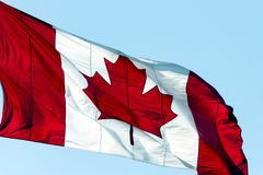 Kanadyjczyk Chorągwiany Kanada obrazy stock