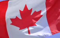 kanadyjczyk flaga obraz royalty free