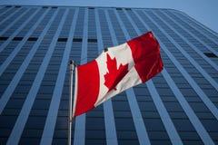 Kanadyjczyk flaga przed biznesowym budynkiem w Ottawa, Ontario, Kanada Ottawa jest stolicą Kanada obrazy stock