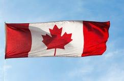 Kanadyjczyk flaga w wiatrze przeciw niebu fotografia stock