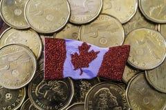 Kanadyjczyk jeden dolara monety z kanadyjczykiem zaznacza obrazy royalty free