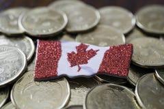 Kanadyjczyk jeden dolara monety z kanadyjczykiem zaznacza fotografia royalty free