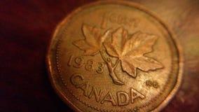 Kanadyjczyk moneta zdjęcia royalty free