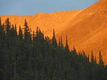 Kanadyjczyk Rockies zdjęcie stock