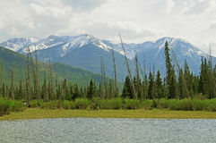 Kanadyjczyk Rockies. obraz royalty free