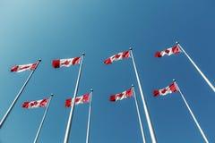 Kanadyjczyk zaznacza machać nad niebieskim niebem obrazy royalty free
