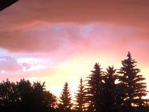 Kanadyjczyka deszcz fotografia royalty free