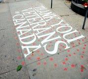 kanadyjscy weterani obrazy royalty free
