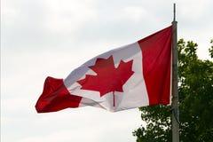 Kanadyjska flaga państowowa Obraz Royalty Free