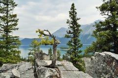 Kanadyjska natura - Kananaskis, halny jezioro obrazy royalty free