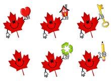 kanadyjski kreskówka klonów liściach royalty ilustracja