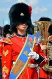 Kanadyjski wojsko Zdjęcia Stock