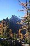 kanadyjskie góry skaliste jesieni Zdjęcia Stock