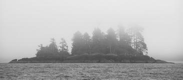 kanadyjskie krajobrazu Widok od morza vancouver Kanada Obraz Royalty Free