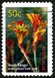 Kanagroo Paw Australian Postage Stamp fotos de stock royalty free