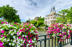 Kanal in Amsterdam mit Blumen auf einer Brücke Stockfotografie