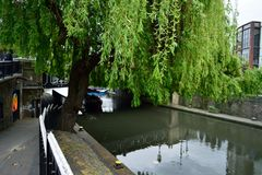 Kanal in Camden Town In der Rückseite gibt es einen Baum und eine Brücke Lizenzfreies Stockbild