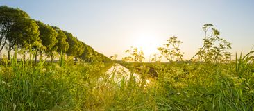 Kanal fließt eine ländliche Landschaft angesichts des Sonnenaufgangs durch lizenzfreie stockbilder