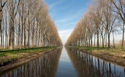Kanal i Belgien nära Bruges Fotografering för Bildbyråer