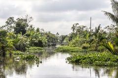 Kanal i den Mekong deltan royaltyfria bilder