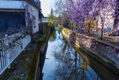 Kanal im Frühjahr lizenzfreies stockfoto