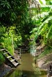 Kanal im Obstgarten stockfoto