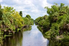 Kanal mit Bäumen auf Seite Stockfotos