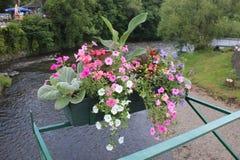 Kanal mit Blumen auf einer Brücke stockbild