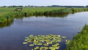 Kanal mit waterlily ` s im grünen Herzen lizenzfreie stockbilder