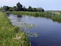 Kanal mit waterlily ` s im grünen Herzen stockbild