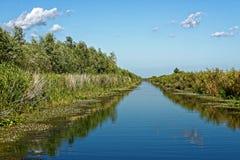 Kanal nära Trei Bibani i Donaudelta royaltyfri fotografi
