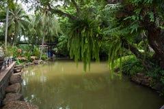 kanal och trädgård royaltyfri fotografi