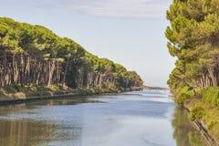 Kanal regionalen Parks Sans Rossore, Italien Stockbild