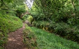 Kanal Severn - Themse, Tarlton-Brücke, Coates, Cotswolds, Vereinigtes Königreich lizenzfreie stockfotos