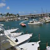 Kanal von Miami Stockfotografie
