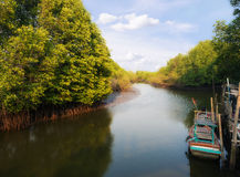 Kanal zusammen mit der Mangrove forrest und wenigem Boot in der ländlichen Szene Stockfoto