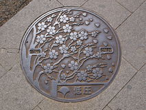 Kanaldeckel in Ueno-Park, Tokyo - Japan Lizenzfreie Stockfotos