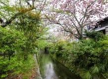 Kanalen längs Tetsugaku ingen michi, bana för filosof` s royaltyfri bild