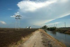 Kanalen stöter ihop med risfältfält Arkivbild