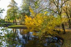 Kanalen van Amstelveen, de herfsttijd stock foto