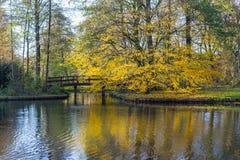 Kanaler av Amstelveen, hösttid Royaltyfri Fotografi