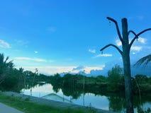 Kanalfischen in der Landschaft stockbild