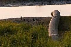 kanalizacyjna zanieczyszczenie woda Obrazy Stock